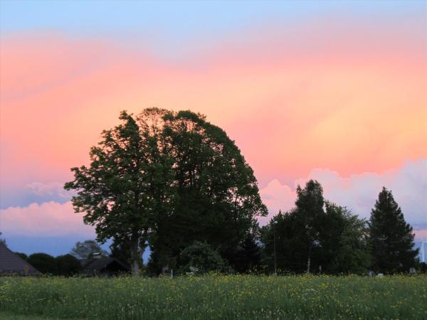 08 Spiegelung des Sonnenuntergangs (2)
